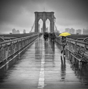 двухцветная картинка - черный и желтый цвета