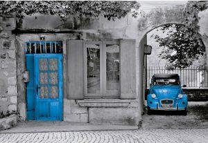 двухцветная картинка - черный и синиц цвета